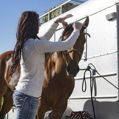 Shop Horse Care