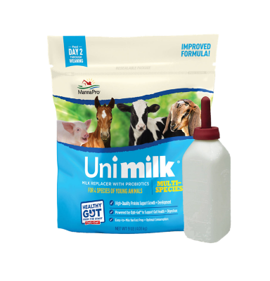 calf milk replacement