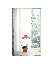 Weathershield Curtains (50-in x 72-in)