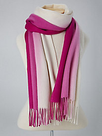 Ombre Cashmere Scarf by Echo