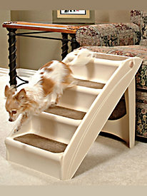 Pup Steps Plus