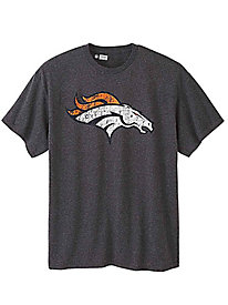 NFL Team Weathered Logo Graphic Tee