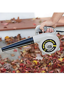 Pro-Series Mighty Blower