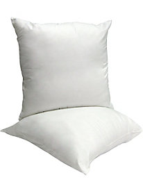 Euro Twin Pack Pillows