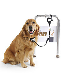 Safe Spot Pet Lock & Leash