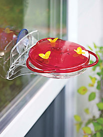 3-in-1 Hummingbird Feeder