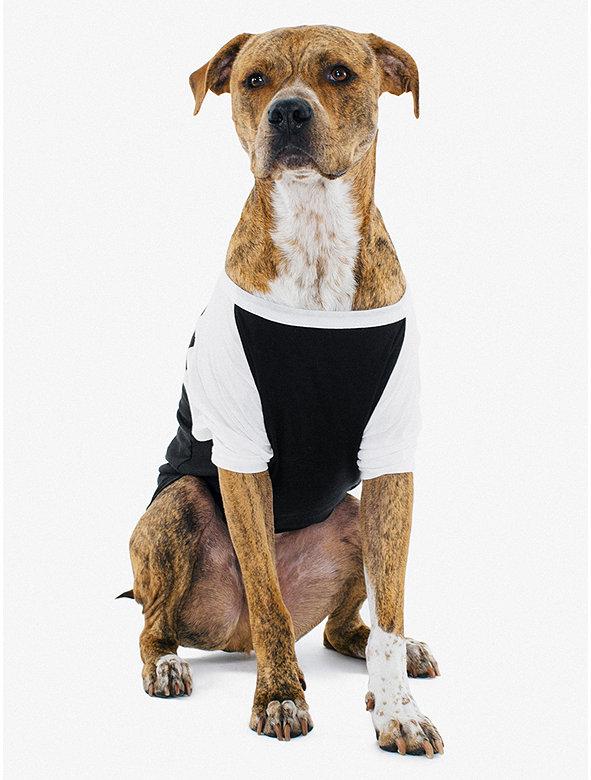 50/50 3/4 Sleeve Large Dog Raglan