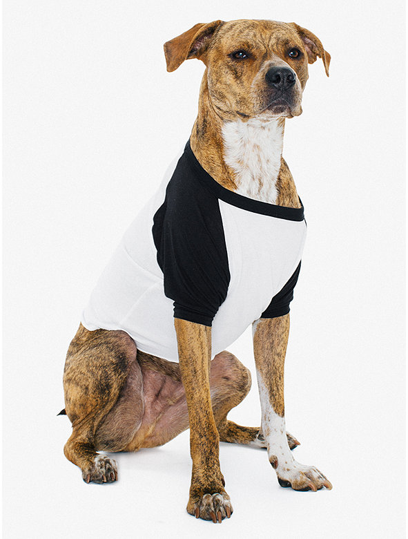 50/50 3/4 Sleeve Large Dog Raglan