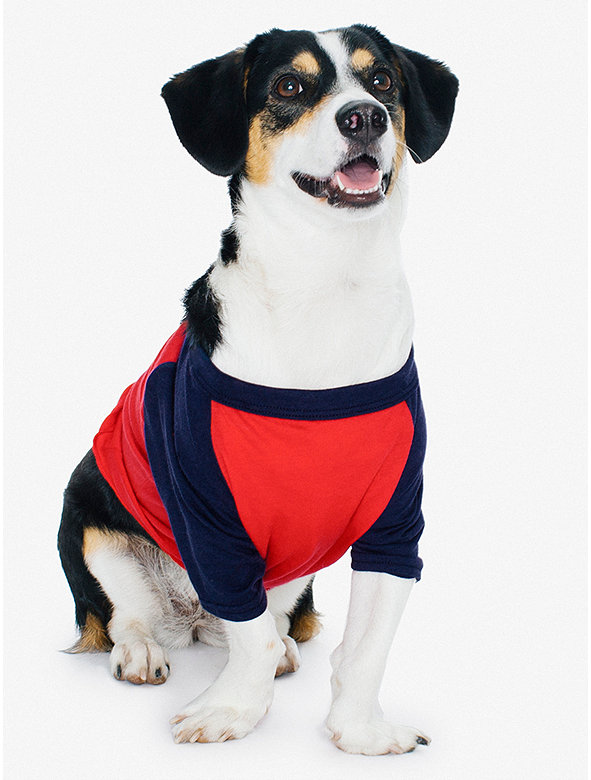 50/50 3/4 Sleeve Small Dog Raglan