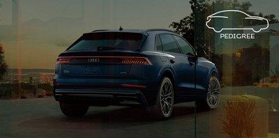 2019 Audi Q8 Suv Quattro Price Specs Audi Usa