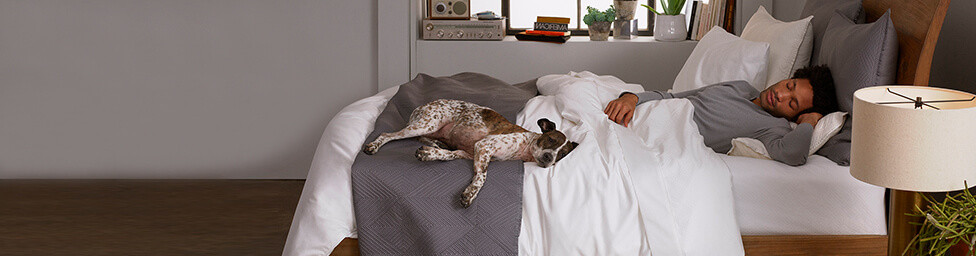 Wamsutta Bedding