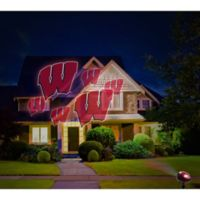 University of Wisconsin Pride Light