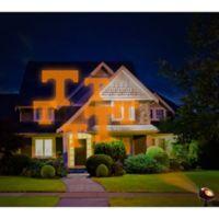 University of Tennessee Pride Light