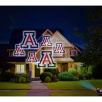 University of Arizona Pride Light