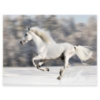 Wild and Free Outdoor All-Weather Canvas Wall Art
