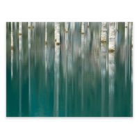 Silver Lake Outdoor All-Weather Canvas Wall Art