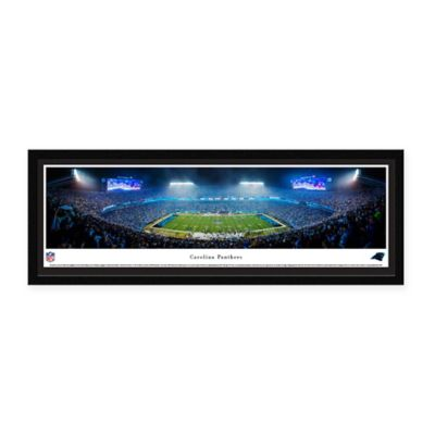 NFL Carolina Panthers Select Framed Panoramic Picture