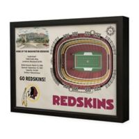 NFL Washington Redskins 3D Stadium View Wall Art