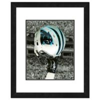 NFL 18-Inch x 22-Inch Carolina Panthers Helmet Framed Photo