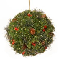 National Tree Company 12-Inch Crestwood Spruce Kissing Ball w/100 Battery-Operated Infinity Lights