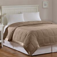 Madison Park Windom Microfiber Twin Blanket in Brown