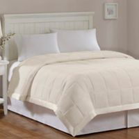 Madison Park Windom Microfiber Twin Blanket in Ivory