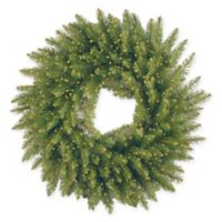 National Tree Company 24-Inch Kingswood Fir Wreath with 250 Battery-Operated Infinity™ Lights
