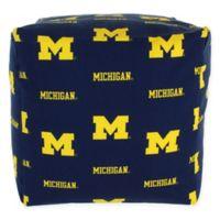 University of Michigan Cube Cushion