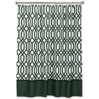 Bacova Theorem Shower Curtain in Black