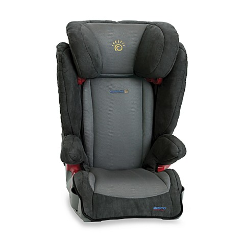 monterey booster car seat by sunshine kids gray bed bath beyond. Black Bedroom Furniture Sets. Home Design Ideas