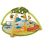 SKIP*HOP® Giraffe Safari Activity Gym