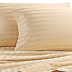 Wamsutta® Damask Stripe 500-Thread-Count PimaCott® Queen Sheet Set in Honey