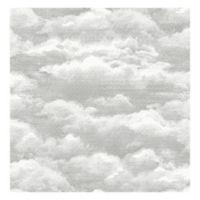Nuwallpaper™ Atmosphere Peel And Stick Wallpaper in Grey