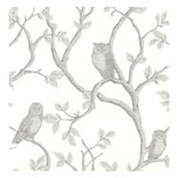 Brewster Home Fashions Enchanted Forest Owl and Tree Wallpaper in Grey