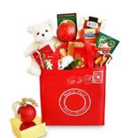 North Pole Special Delivery Holiday Gift Tote