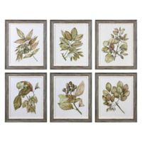 Uttermost Seedlings Wall Art (Set of 6)