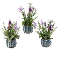 D&W Silks 3-Piece Lavender & Herbs in Ceramic Planter Set