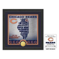"""NFL Chicago Bears """"State"""" Photo Mint"""