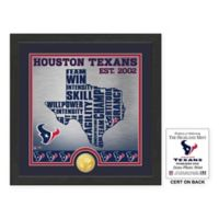 "NFL Houston Texans ""State"" Photo Mint"