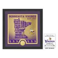 "NFL Minnesota Vikings ""State"" Photo Mint"