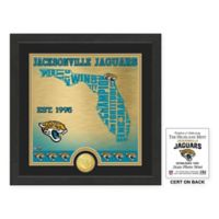 "NFL Jacksonville Jaguars ""State"" Photo Mint"