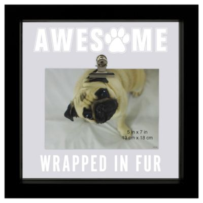 sentiments pet theme illuminated square float picture frame with clip in black - Dog Picture Frame