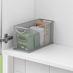 .ORG Small Pantry Organizer Bin in Silver
