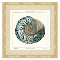 Square Shell III Framed Giclée Wall Art