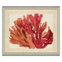 Seafan Wall Art in Red