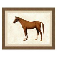 Horse I Framed Wall Art