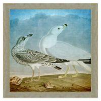 Seagulls Wall Art