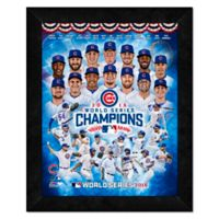 MLB Chicago Cubs World Series Champs Team Frame