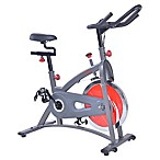 Chain Drive Indoor Cycling Bike in Grey