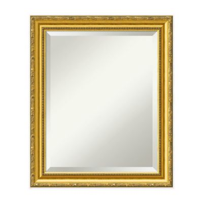 20 inch x 24 inch colonial mirror in gold - Wood Framed Mirrors